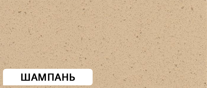 1102_ШАМПАНЬ
